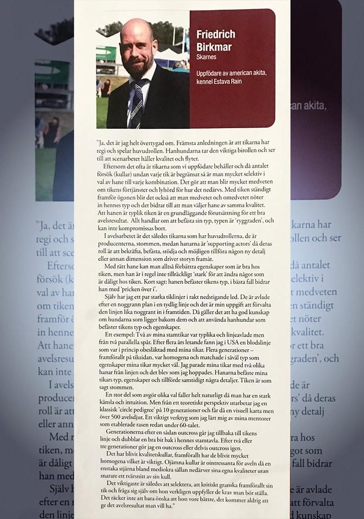 Estava-Rain-American-Akitas-Media-Newspaper-1-min (3)
